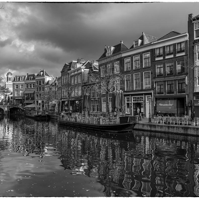 <strong>~Nieuwe Rijn~</strong>