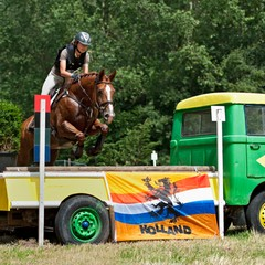 <strong></strong><br><p>SGW VlietlandEventing Zuid Holland 2014</p>