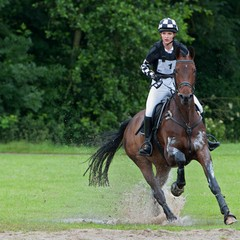 <strong></strong><br><p>SGW Vlietland Eventing Zuid Holland 2014</p>